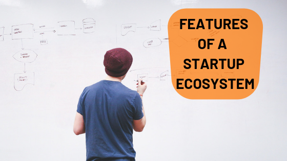 Features of a Startup Ecosystem